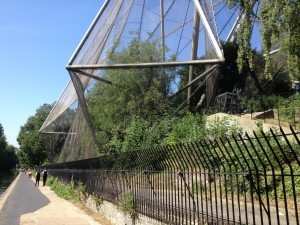 Snowdon aviary at London Zoo