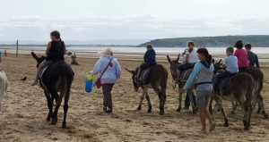 Donkey rides on Weston beach