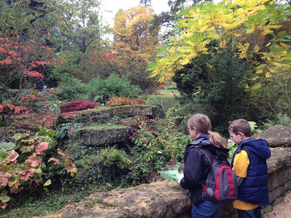 Autumn colours at Batsford Arboretum