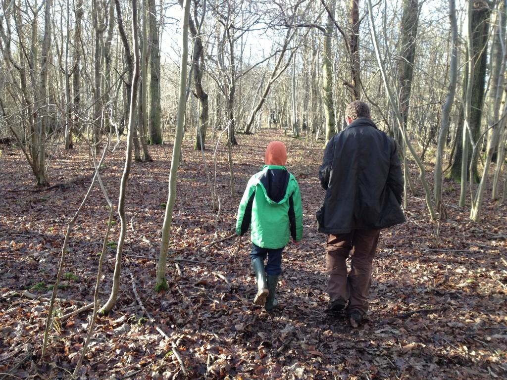 Wildlife walk at Warburg