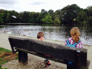 Relaxing by the lake at at California Country Park