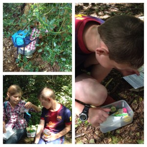 Geocaching treasures at California Country Park