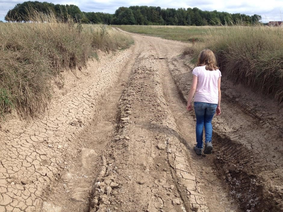 Walking in the tracks, Salisbury Plain