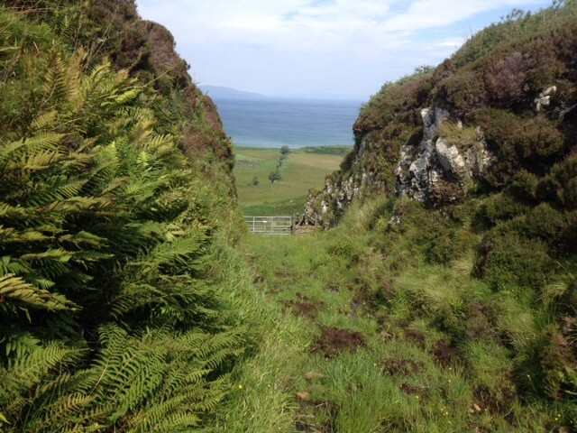 Walk from Blar Dubh plantation towards Laig, Eigg