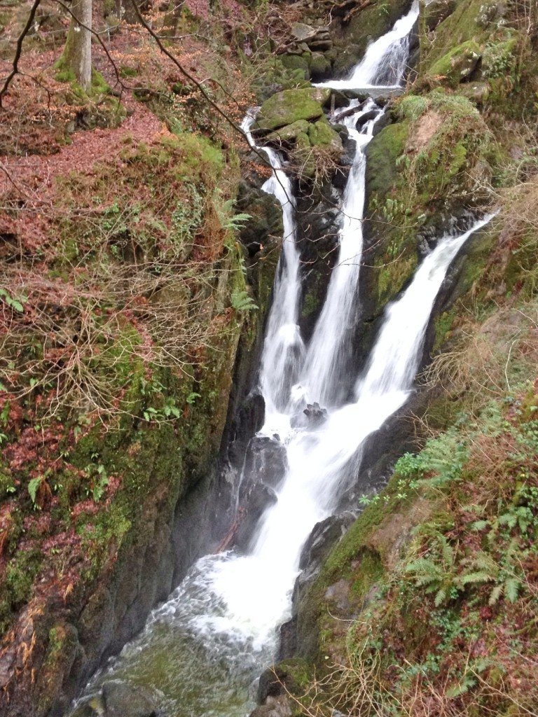 Stock Ghyll Force, near Ambleside