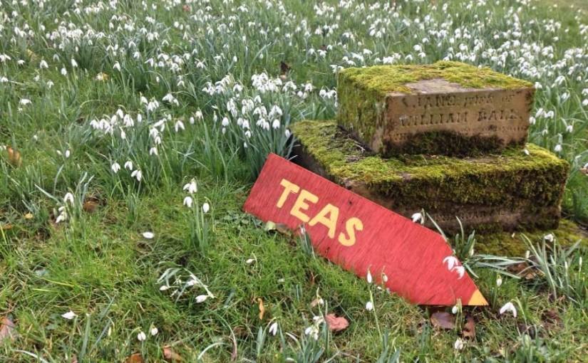 A snowdrop walk near Swyncombe, Oxfordshire