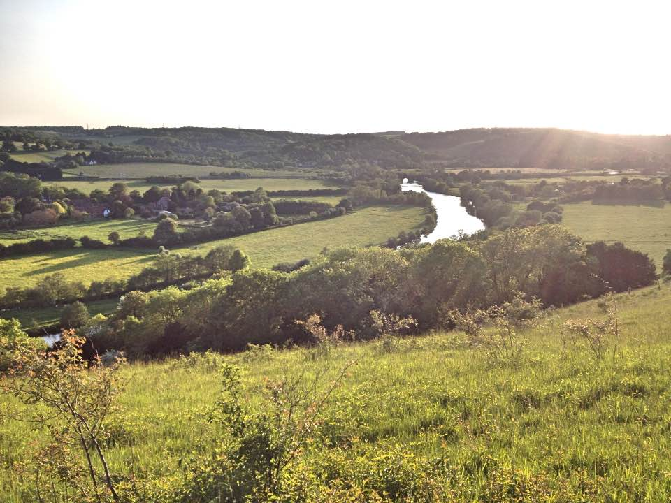 Summer evening view over the Thames, Hartslock Nature Reserve