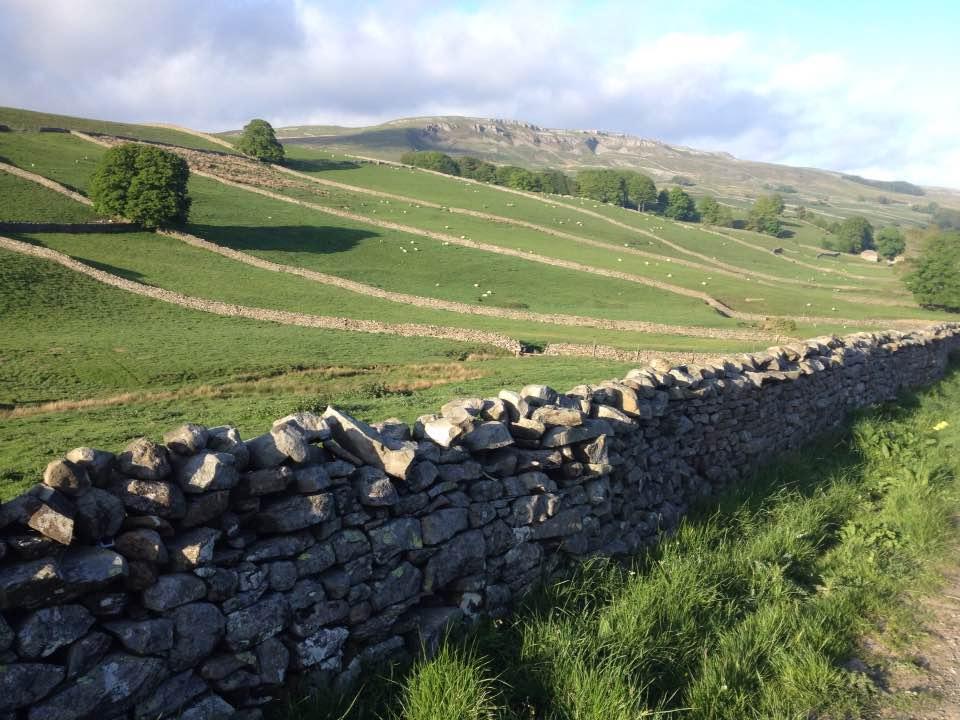 Stone walls near Askrigg, Yorkshire Dales