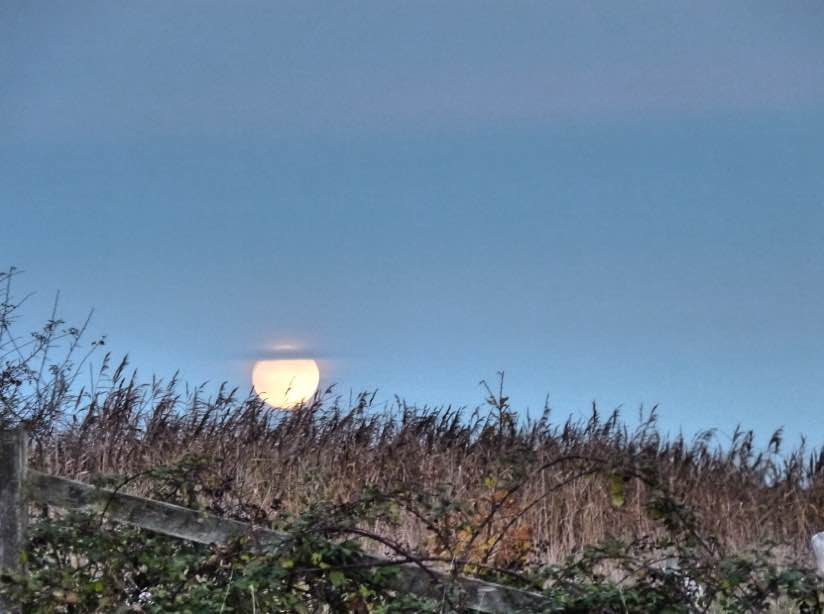 Moon from RSPB Otmoor