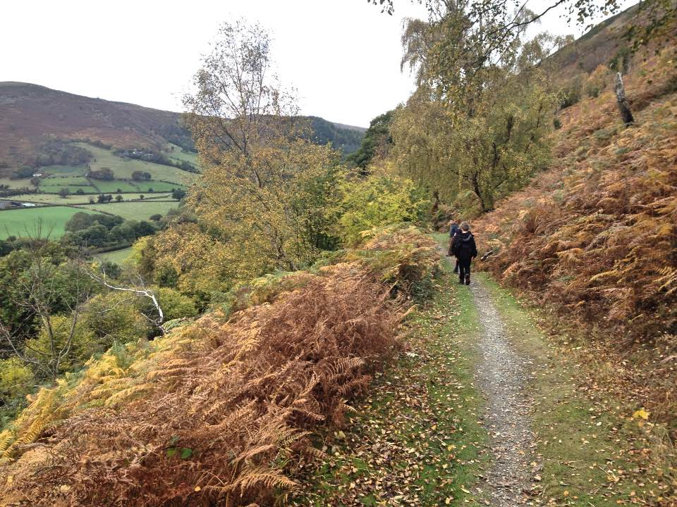 Along the Clwydian Way