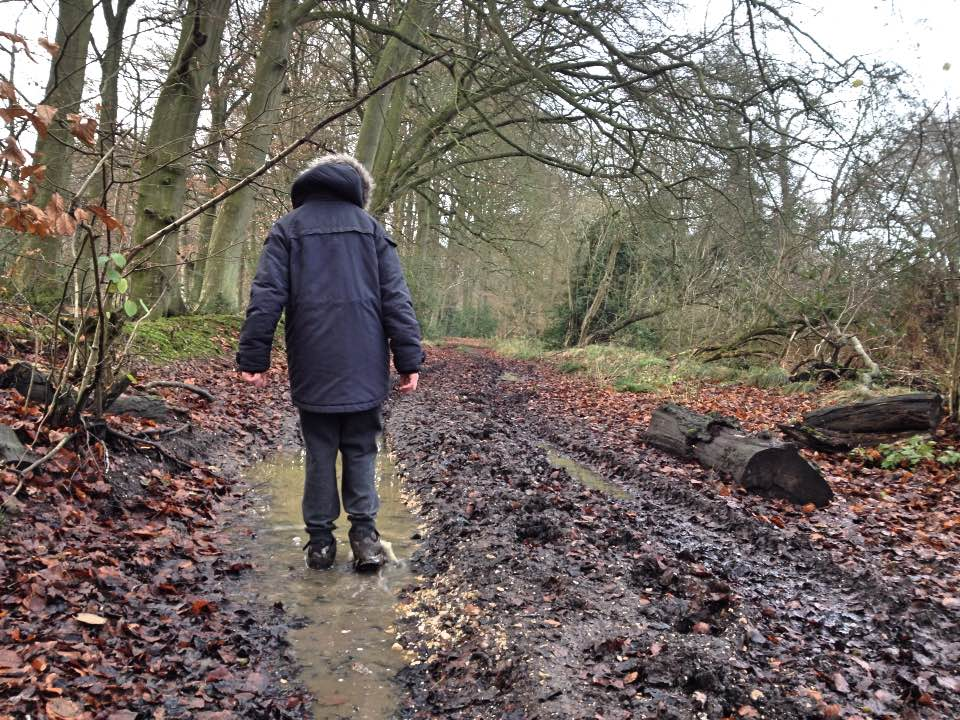 Muddy walks in the wood, near Aldworth