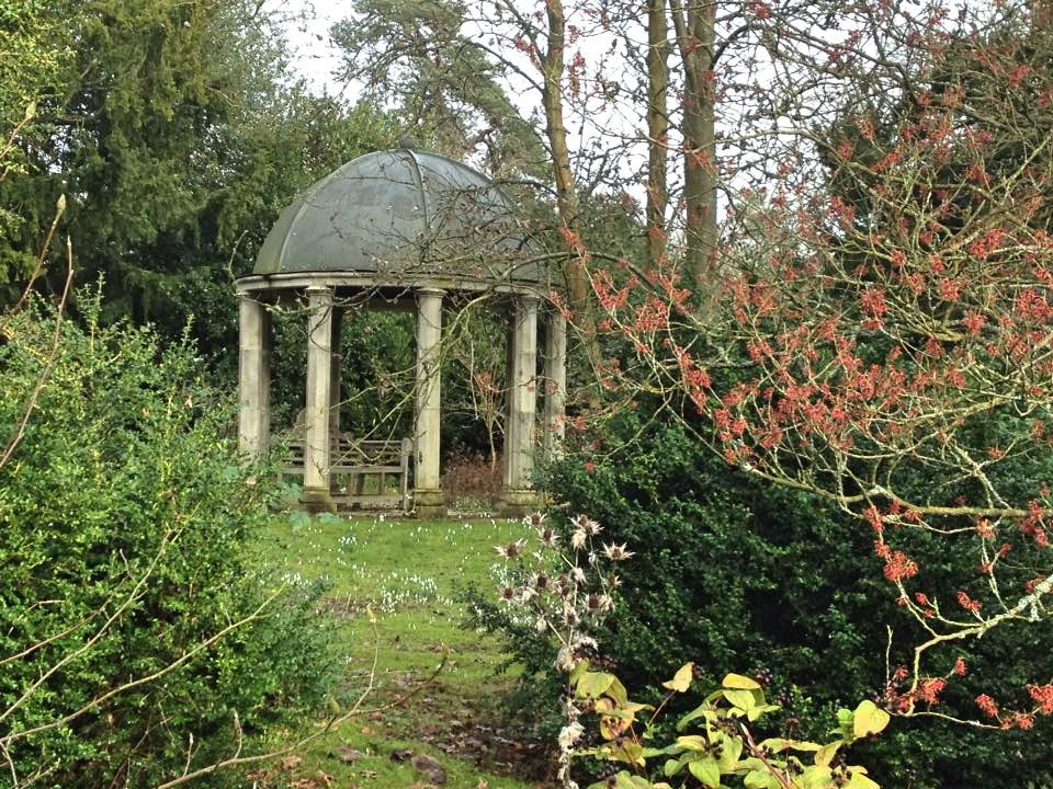 Woodland garden, Kingston Bagpuize house
