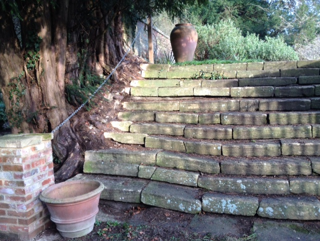 Woodland garden steps, Kingston Bagpuize house