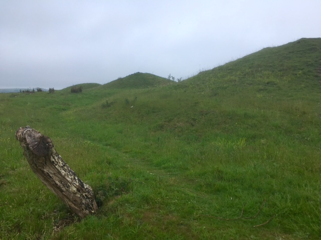 Devil's Jumps round barrows