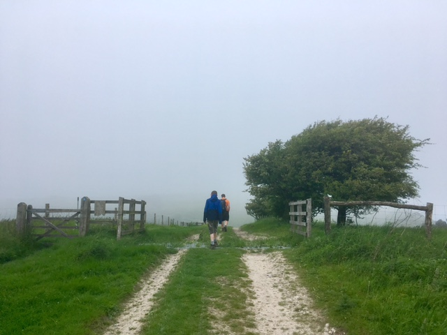 Near Beacon Hill on the South Downs Way