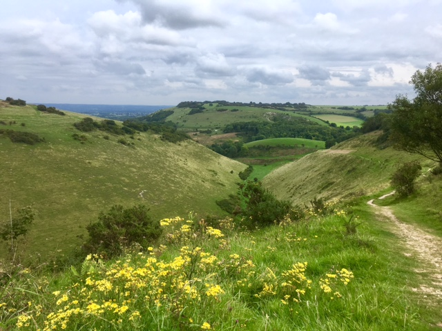 Devil's Dyke view