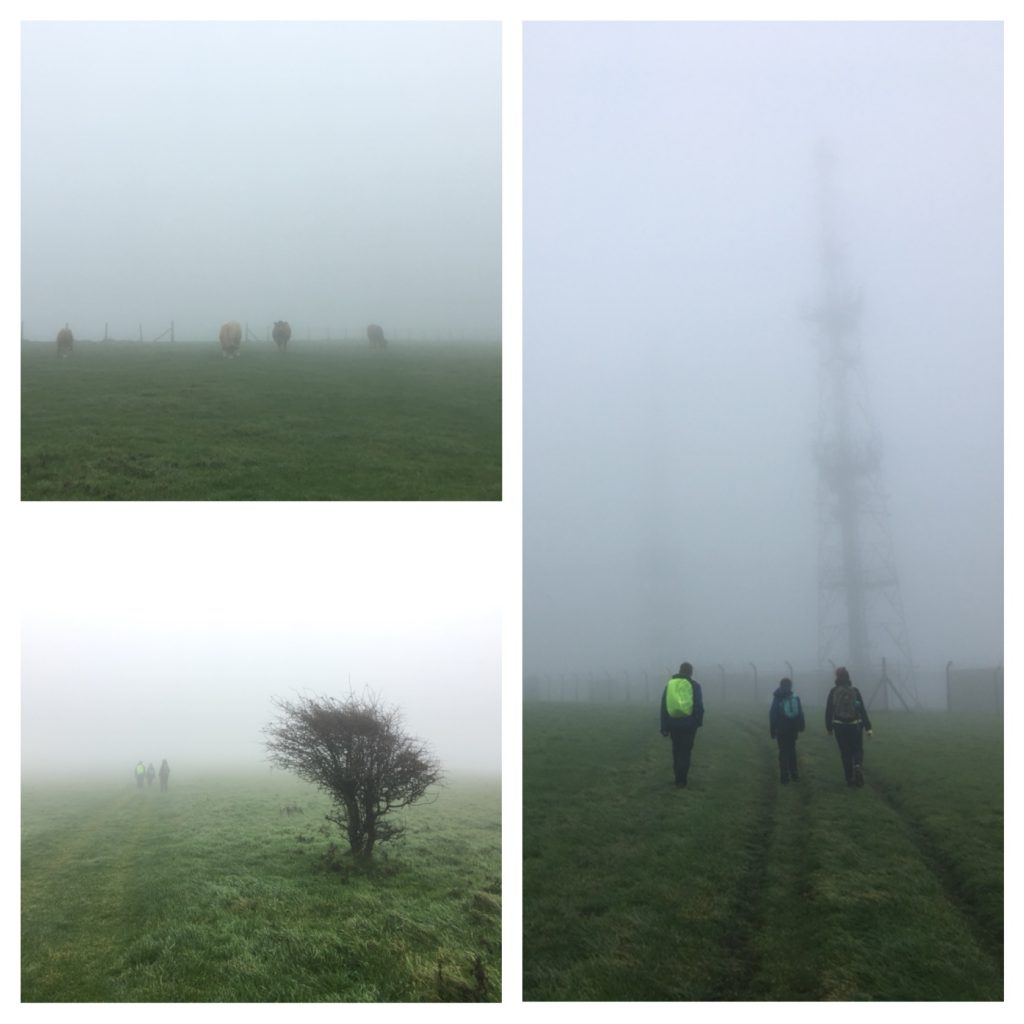 Misty walking on the South Downs Way