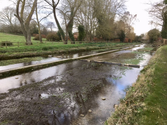 Watercress beds, Ewelme