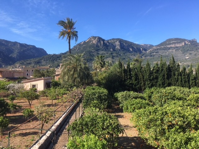 10 things to do in and around Soller, Majorca