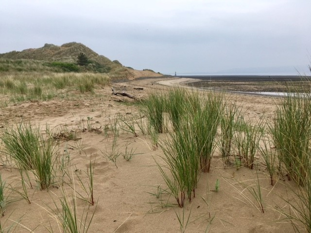 Whiteford Sands, Gower Peninsula
