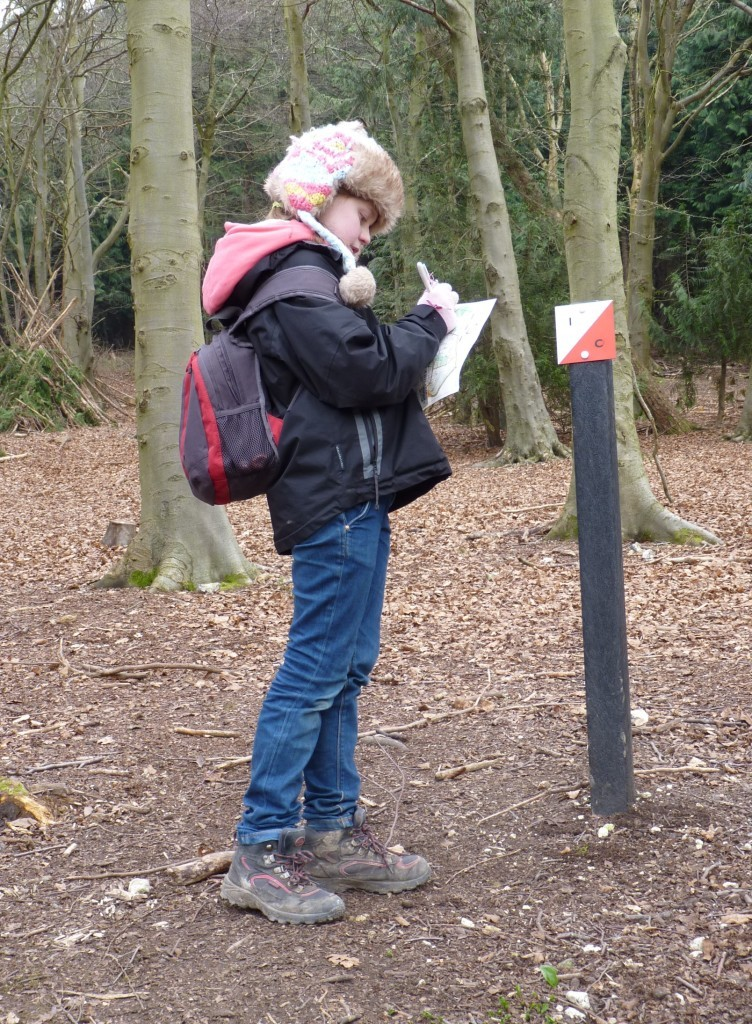 Orienteering at Queen Elizabeth Country Park
