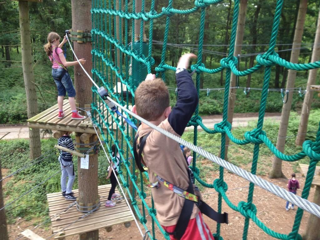 Rope net at TreeRunners