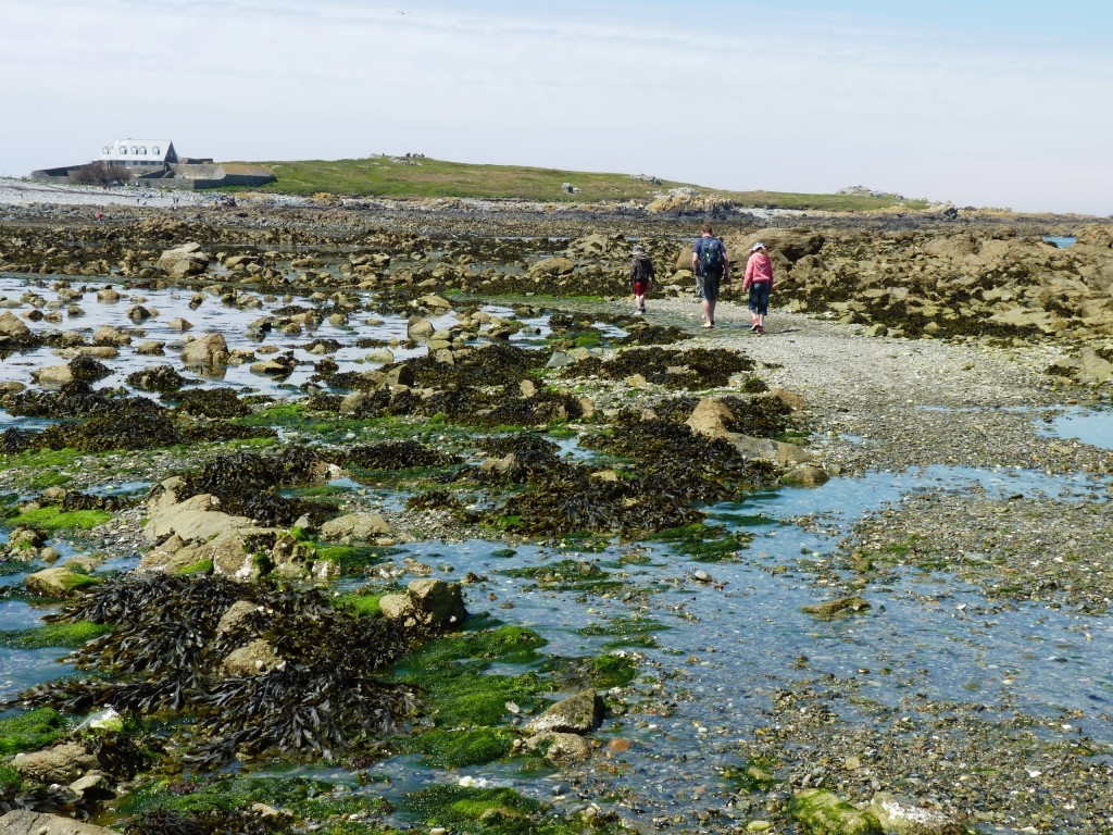 Walk over to Lihou Island