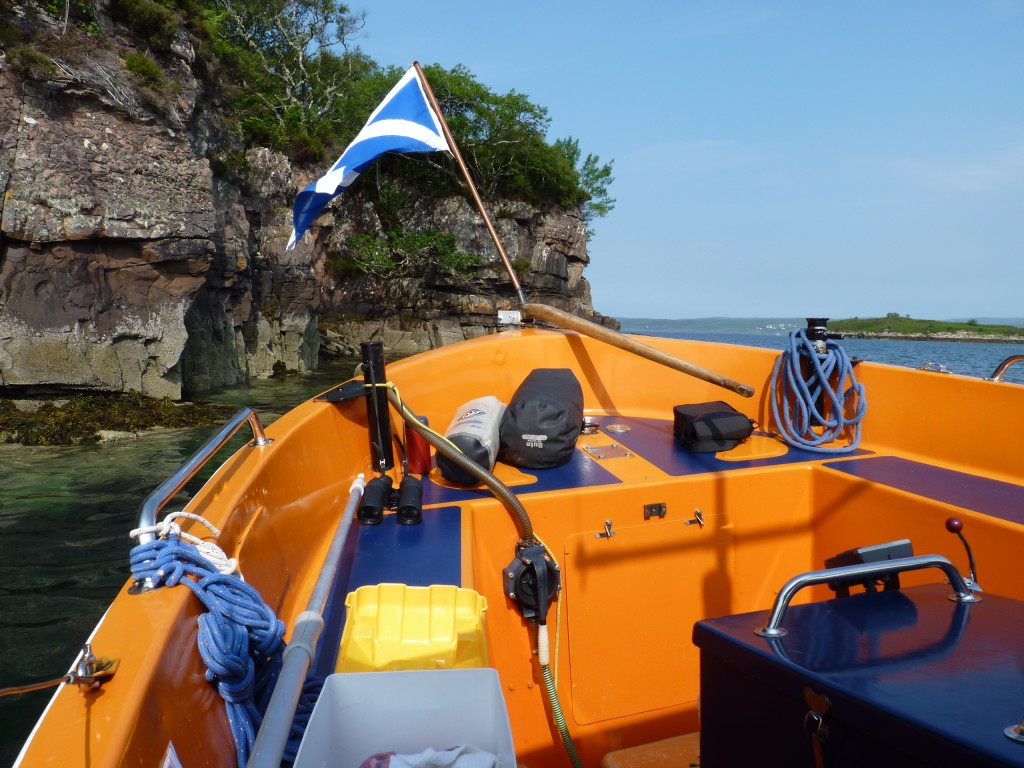 Sealife boat trip