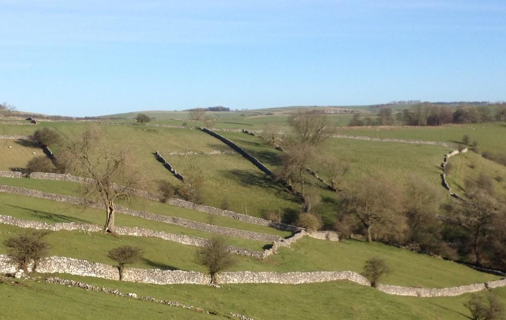Limestone walls near Milldale