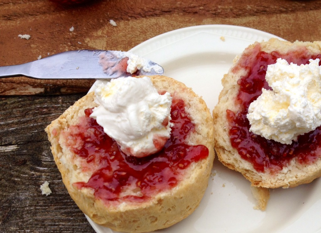 Cream tea at Teapot Cafe, Britchcombe Farm