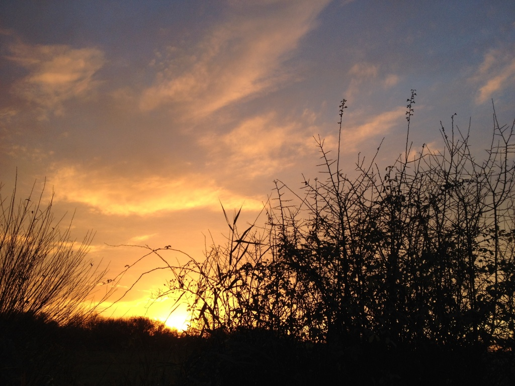 Otmoor_sunset