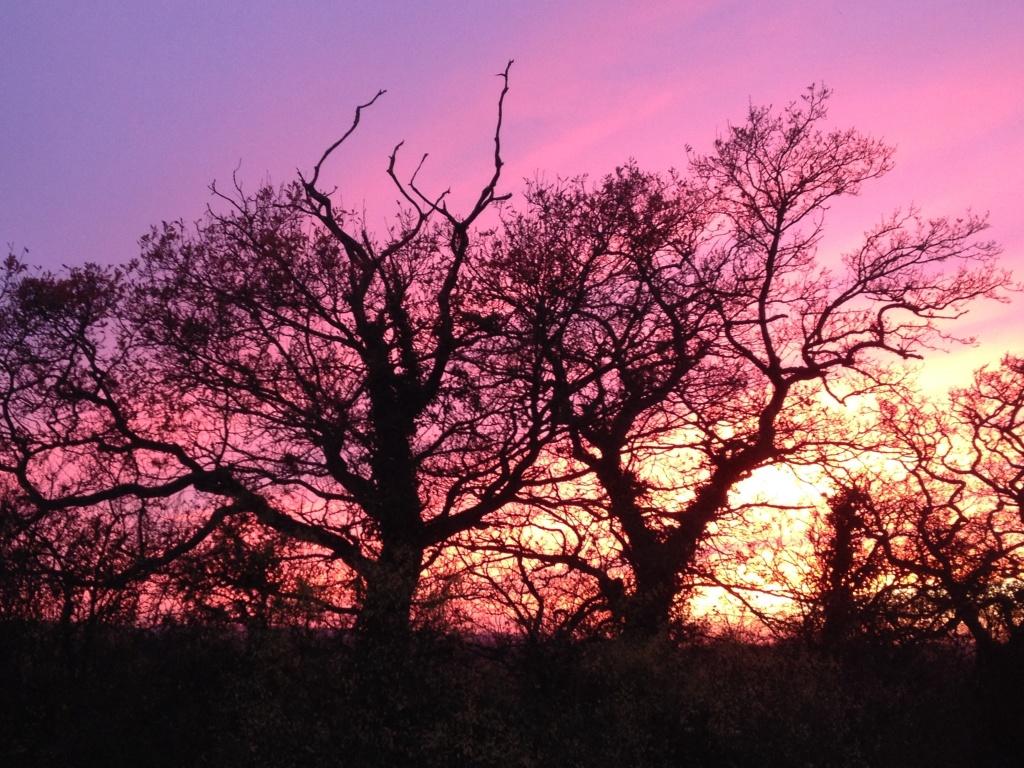 otmoor_sunset4