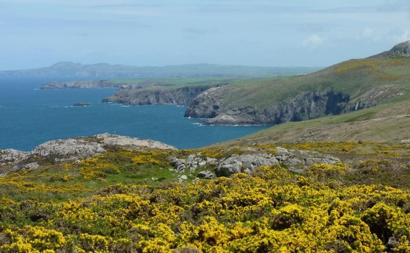 15 things to do in and around St Davids, Pembrokeshire