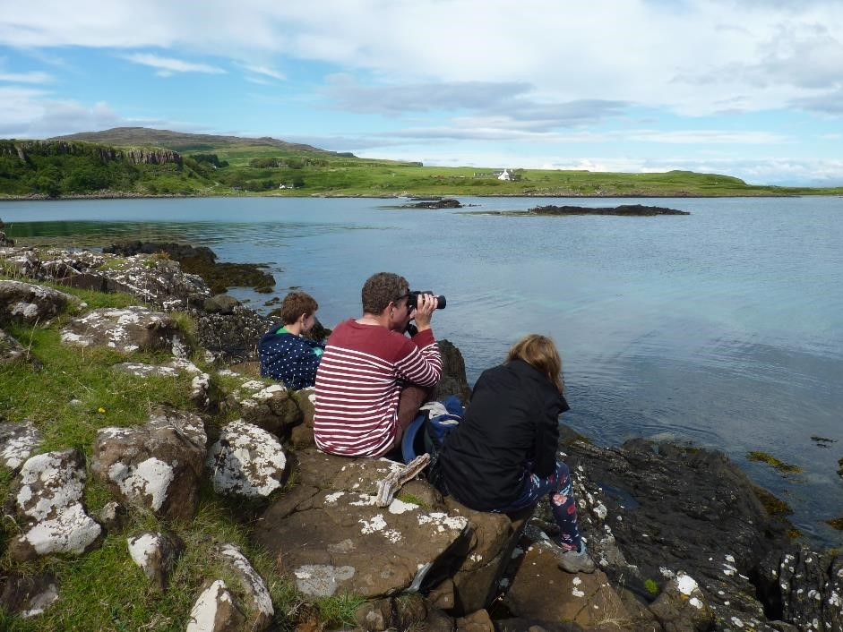 Seal watching, Isle of Eigg