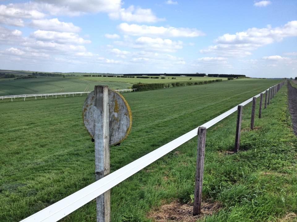 The gallops, Lambourn