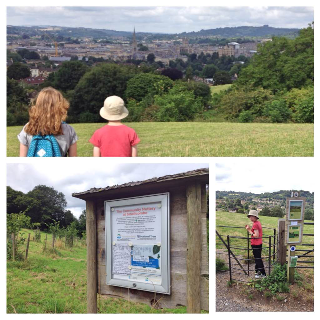 Smallcombe Nuttery and Bathwick Fields, Bath