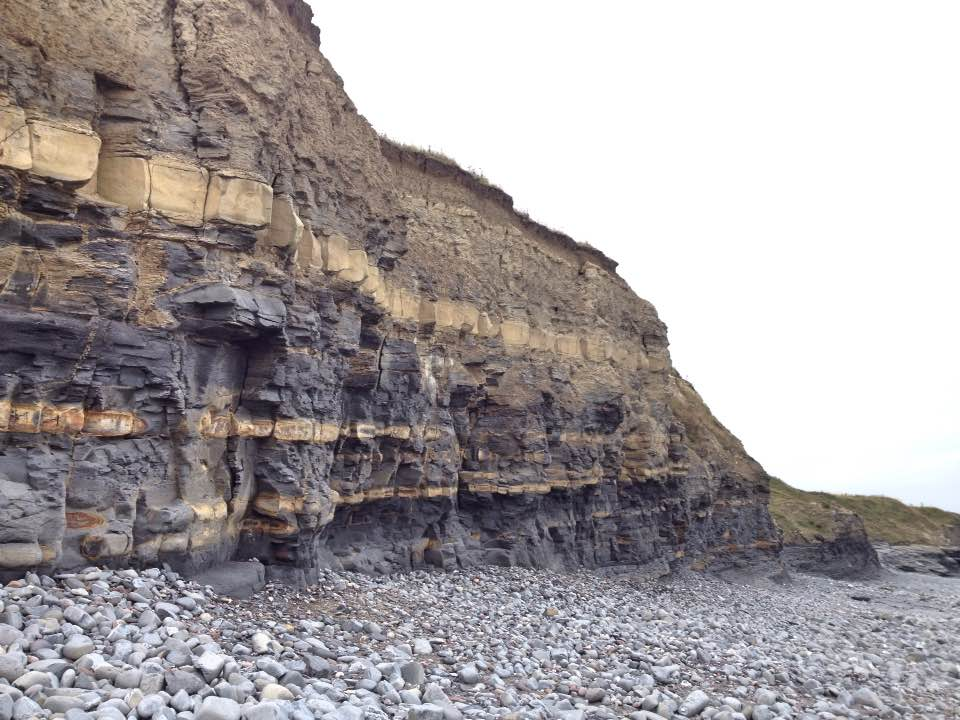 Rock strata, Kilve beach