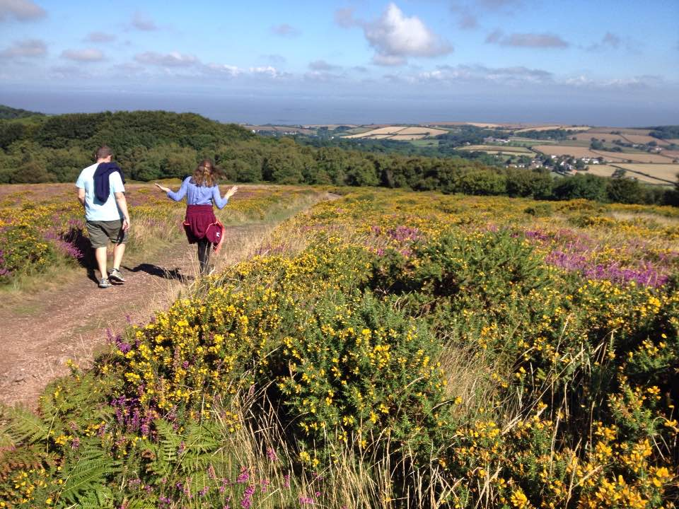 Descending Woodland Hill, Quantock Hills