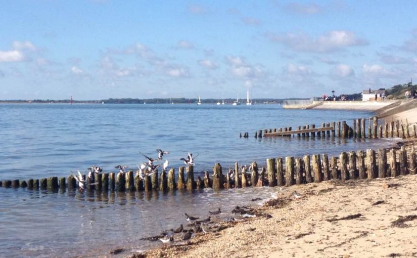 A family walk around Lepe Loop, Hampshire