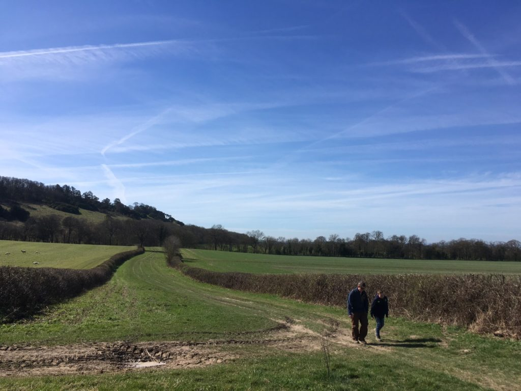 Walking the Ridgeway, near Watlington