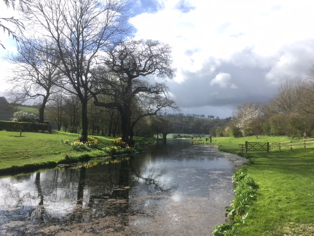 Meon Springs fly fishery