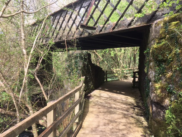 Dingle nature reserve boardwalk, Llangefni, Anglesey