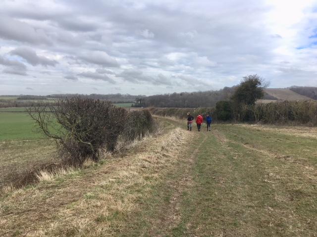 Swan's Way, near Ewelme