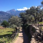View from the GR221, near Soller