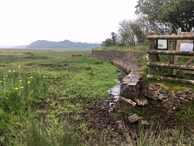 Sea wall across the marsh, Whiteford