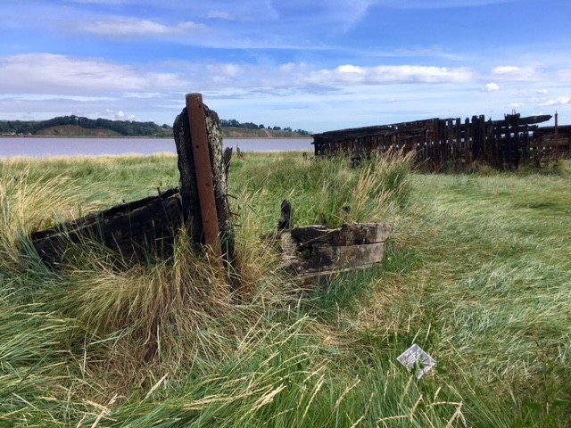 A walk beside the Purton hulks, Gloucestershire