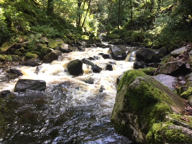 River Esk, en route to Stanley Ghyll Force
