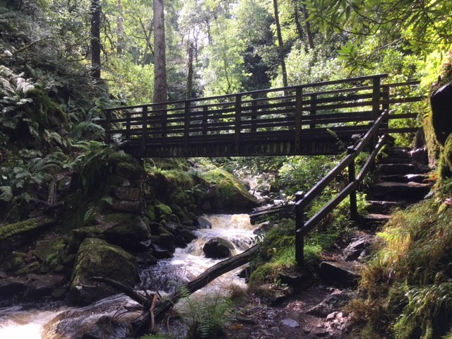 Bridge on walk to Stanley Force waterfall