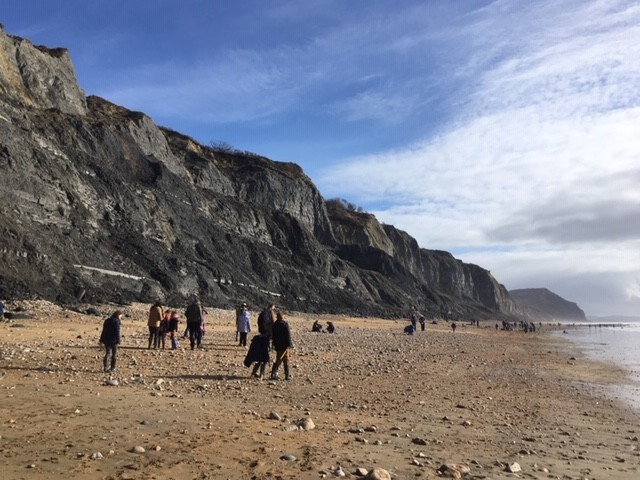Fossil hunting on Charmouth beach
