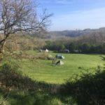 Pasture 3, Thistledown farm